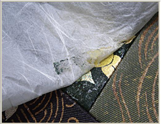 防虫剤により溶けた金彩の樹脂